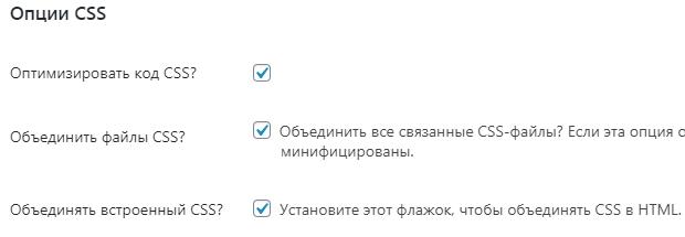settings autoptimize css